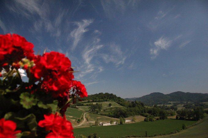 colline-monferrato-mombello
